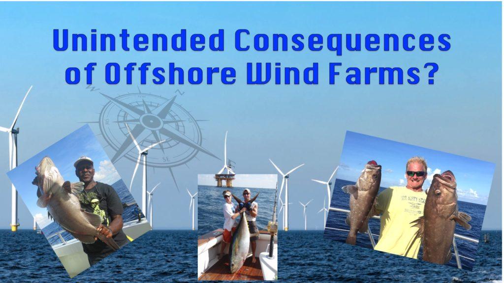 Offshore Wind Farm Fishing
