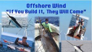 Sportfishing on Offshore Wind
